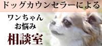 ワンちゃんお悩み相談室